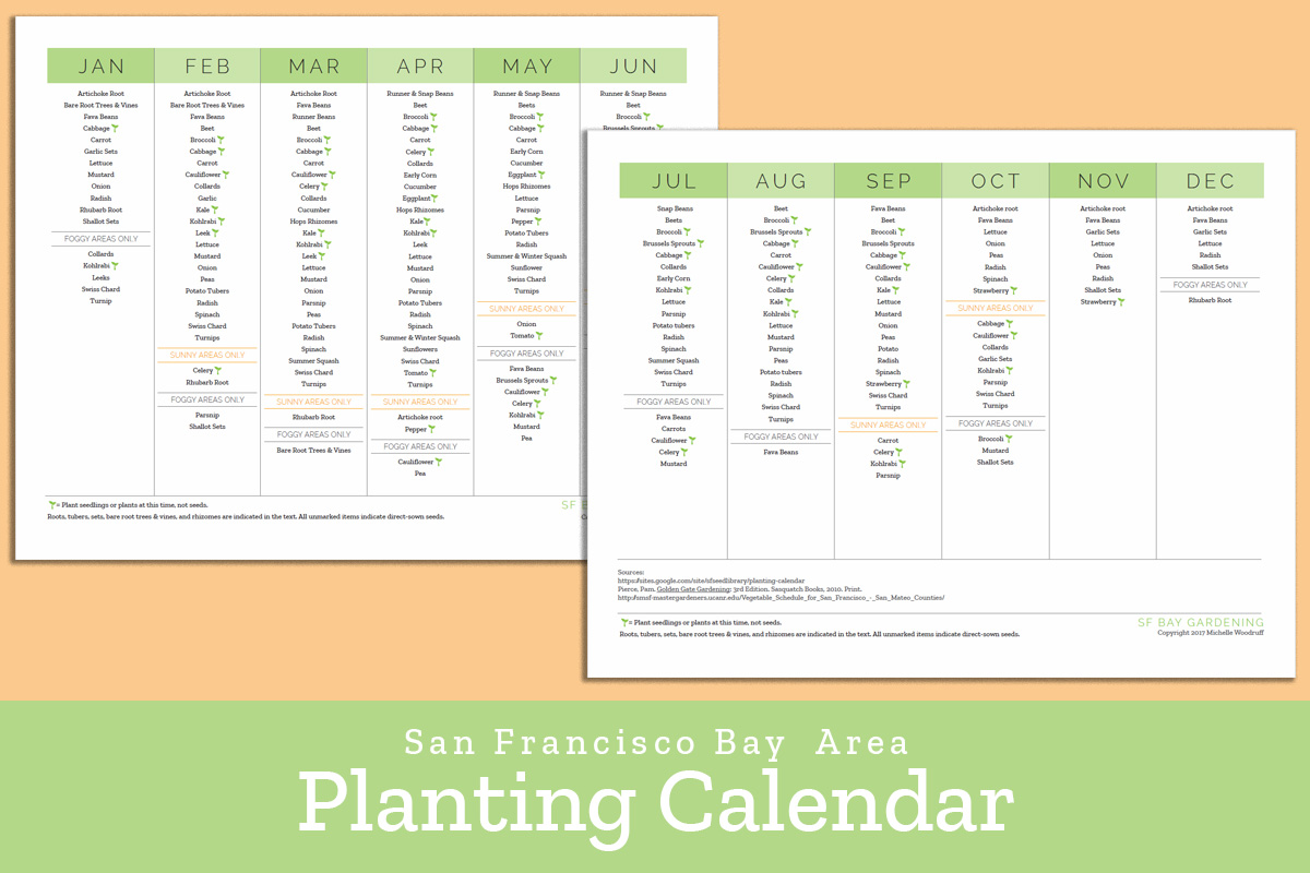 This is a picture of Printable Seed Starting Chart regarding vegetable gardening