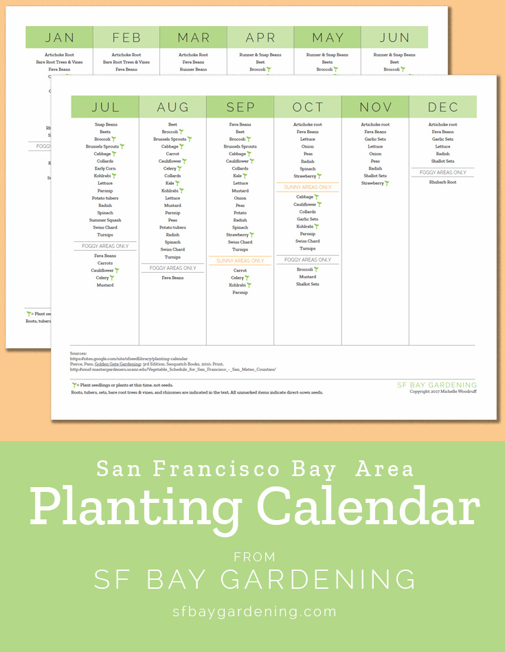 Bay Area Planting Calendar | SF Bay Gardening
