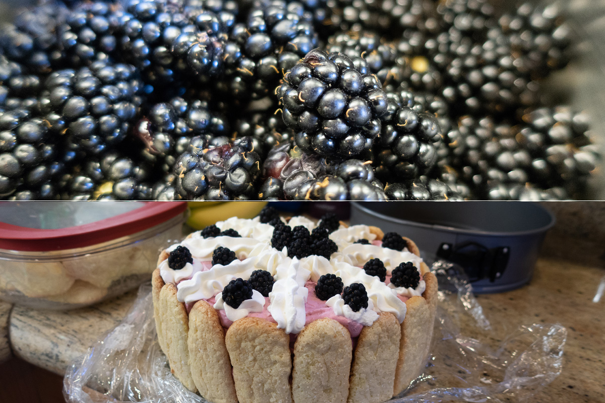When life gives you blackberries…