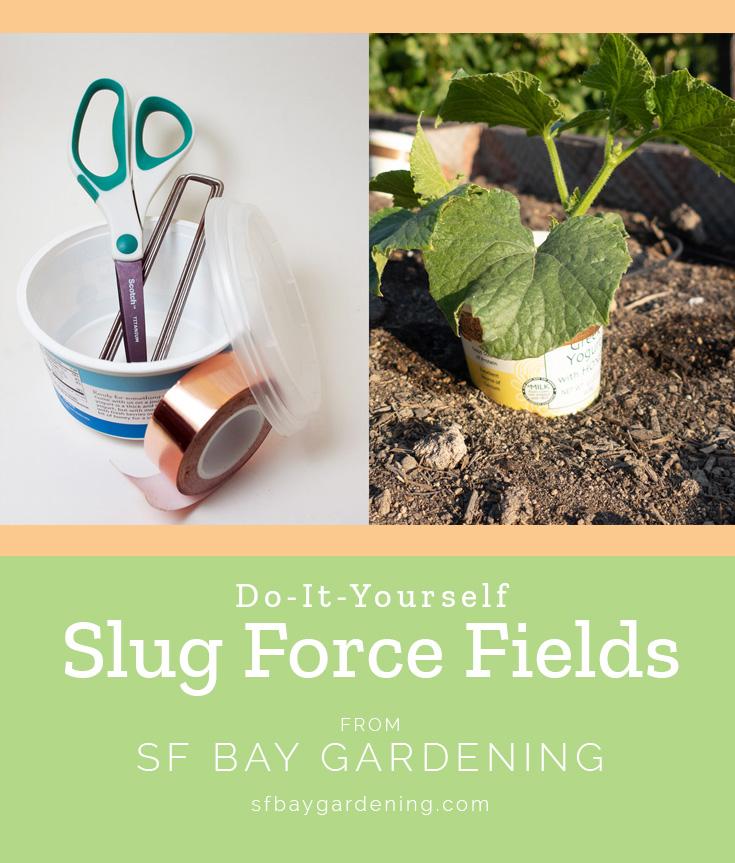 DIY Slug Force Fields