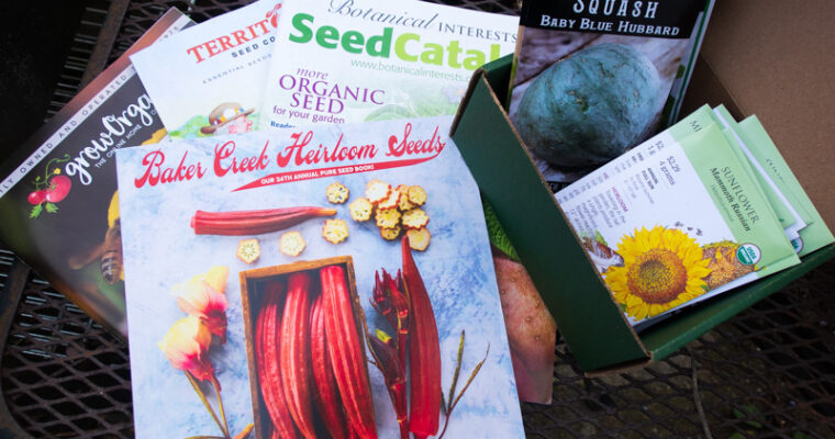 2021 Seed Catalog Reviews