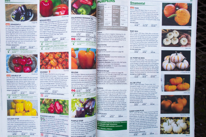 Territorial Seeds 2021 Catalog