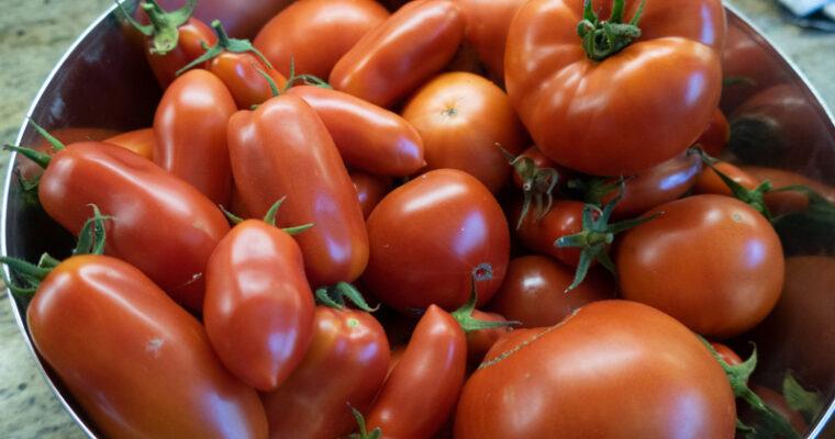 Too Many Tomatoes?